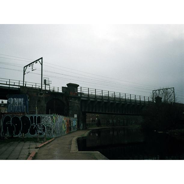 photo (50)